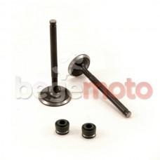 Клапаны впуск, выпуск YX-125/140cc, LF-125/140/150cc (питбайк) Kayo/Pitbike + сальники (комплект)